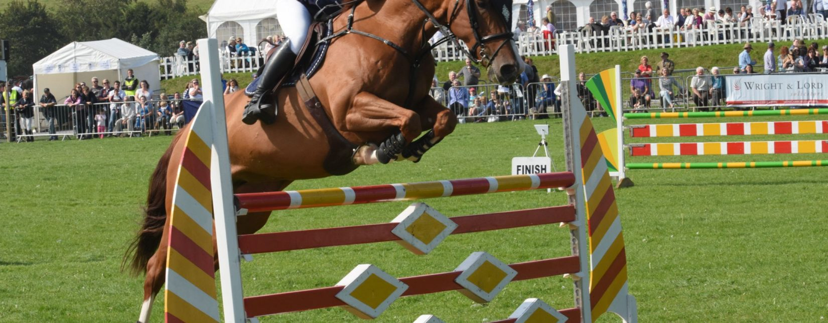 Equestrian display at Westmorland County Show