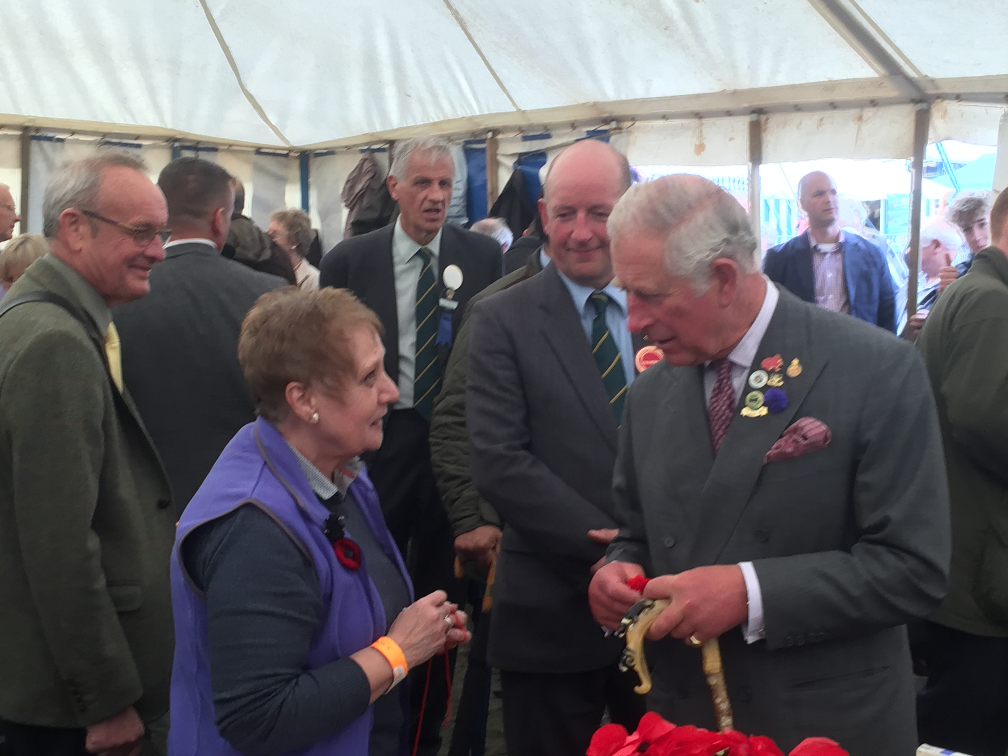 Prince Charles supports the Poppy Installation