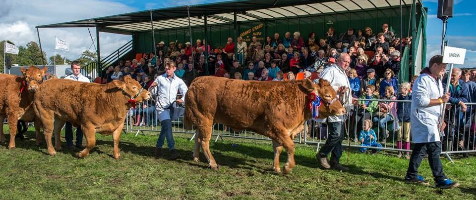 Westmorland Show